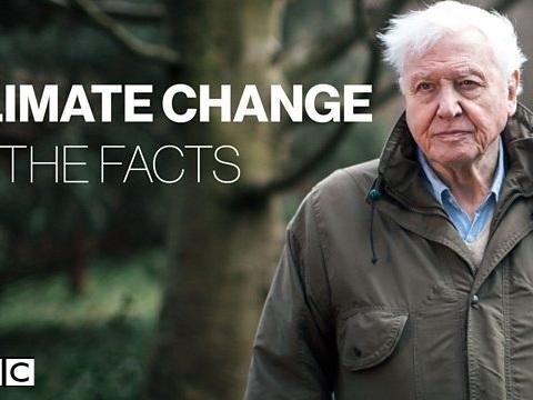 Cambiamenti climatici, Sir David Attenborough: la catastrofe è vicina, abbiamo poco tempo