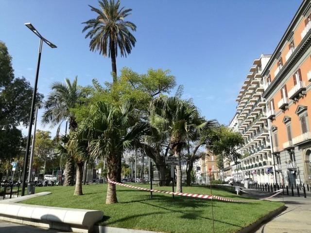 Napoli, dal degrado alla rinascita: i giardini di Largo Pignatelli sono di nuovo verdi