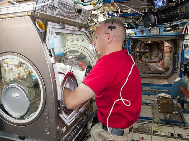 Documentate per la prima volta le prove di danni cerebrali dopo una lunga permanenza nello spazio