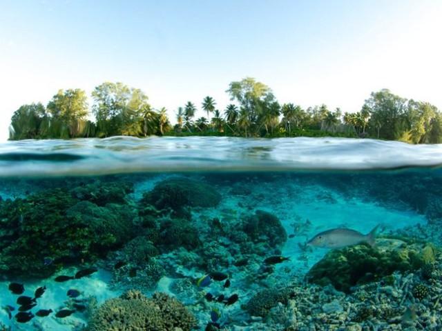 Seychelles più vicine con il nuovo volo British Airways