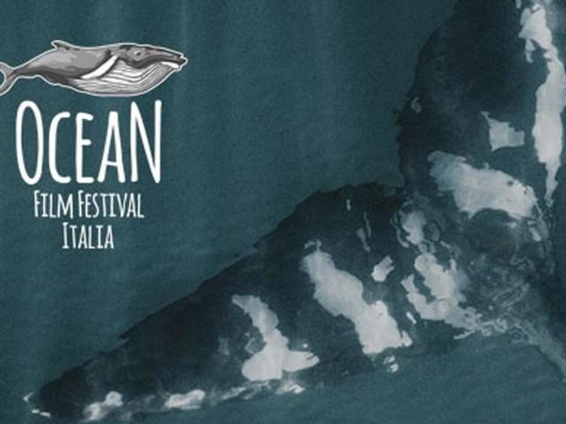 Ocean Film Festival, al via il 14 ottobre la rassegna dedicata al fragile ambiente marino