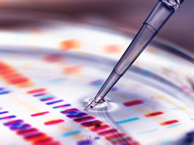 Entro aprile il test sierologico che certifica l'immunità