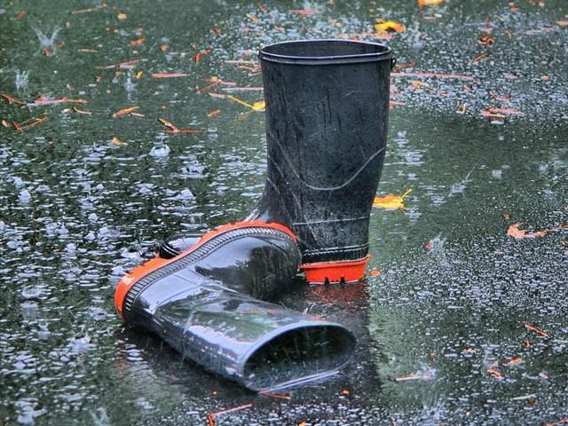 Fiumi e laghi a rischio. A Venezia 110 centimetri di acqua