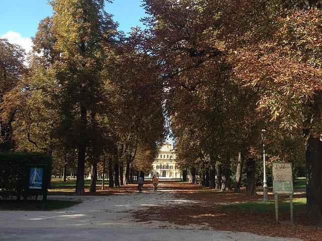Parma, rapina con coltello per comprare droga: presi 17enni magrebini