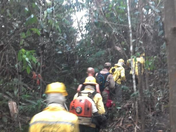 Operação Verde Brasil in Amazzonia: Bolsonaro ora vieta di accendere fuochi per 60 giorni