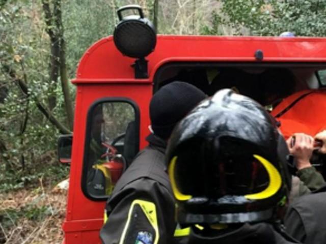 Lusiana, travolto dall'albero che stava tagliando: muore 60enne