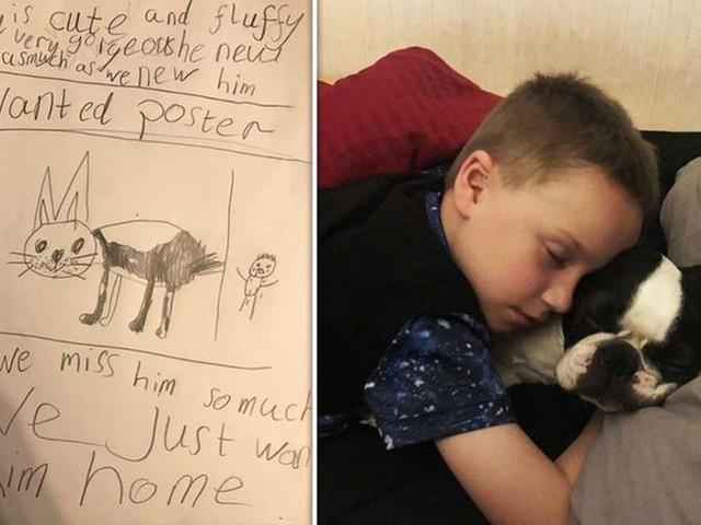 """A sette anni disegna i volantini per il suo cane rapito e lo ritrova. """"Ora siamo felici"""""""