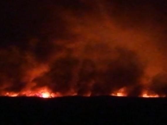 """Incendi in Sardegna, Confagricoltura """"Il bilancio sarà molto pesante"""""""