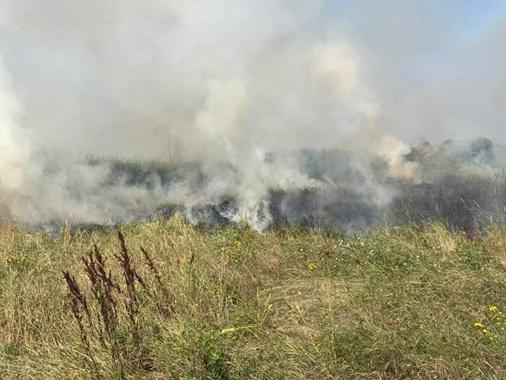 Incendio di sterpaglie a Bozzolo: è il quarto in poco tempo e arrivano i Vigili del Fuoco