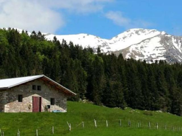 """""""Prendersi cura della montagna"""": convegno CAI con escursione nella Foresta del Cansiglio, il 19 e 20 ottobre"""