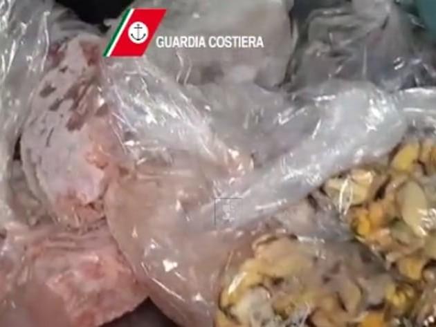 Maxi sequestro di pesce in un noto ristorante 'vip' del Sud Italia: carne scaduta venduta come filetto pregiato