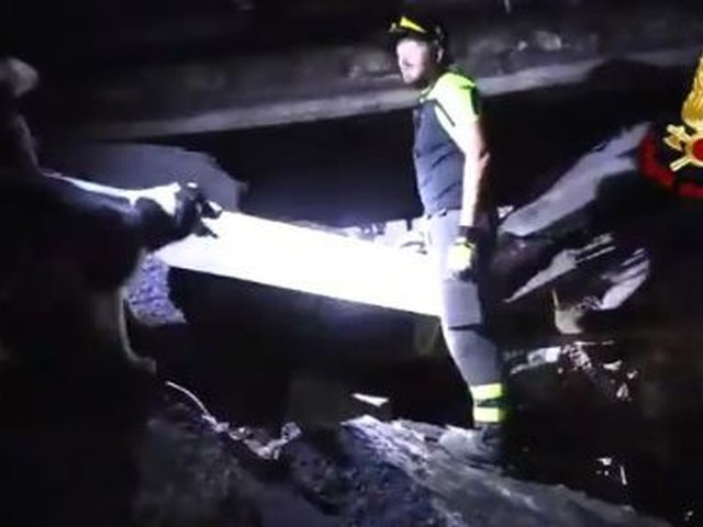 Genova, dalle macerie del ponte estratto vivo un cane: era intrappolato in auto