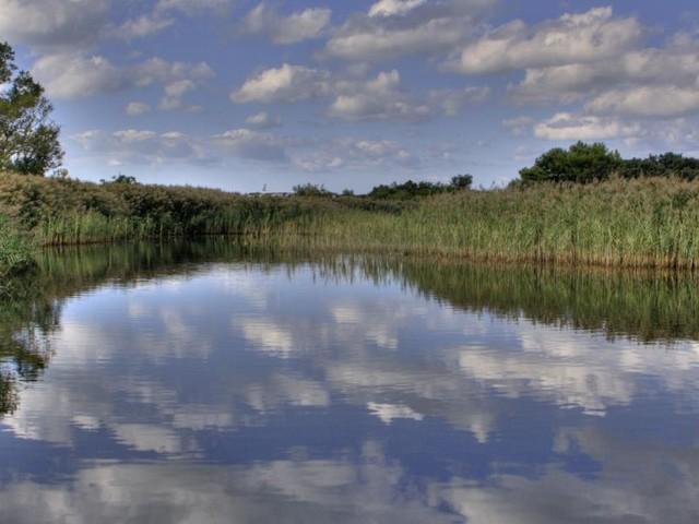 """La Regione Marche sempre più """"green"""": presentati i dati sull'ambiente dell'ARPAM"""