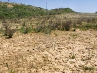 Emergenza idrica, esplode la protesta a Crotone Turisti e agricoltori uniti per la mancanza di acqua