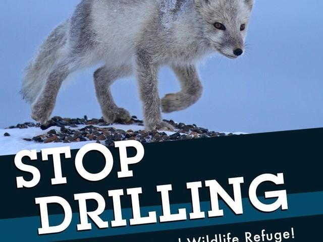 Buone notizie per l'Artico: JPMorgan Chase non finanzierà più le trivellazioni di petrolio e gas e gli impianti a carbone