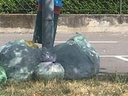 Osio Sotto, rifiuti abbandonati in strada Le foto-denuncia di una lettrice