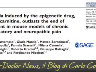L-acetilcarnitina e dolore cronico