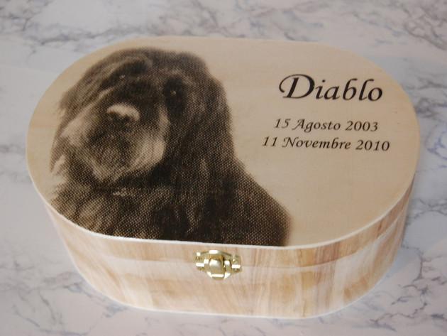 In Liguria sarà possibile seppellire animali con i padroni