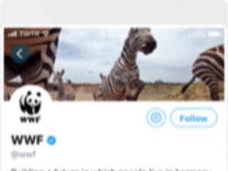 Twitter, l'app ufficiale si aggiorna alla vers 8.0