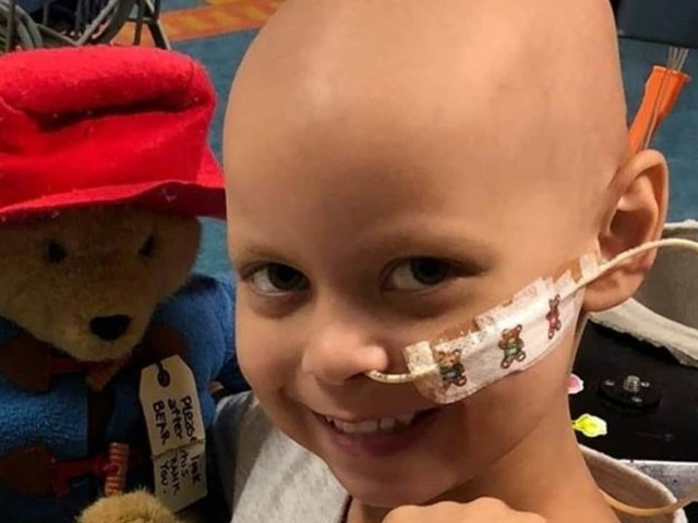 Lulu, principessa con il cancro, cerca la salvezza con una raccolta fondi