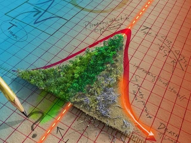 Siamo in guai più grandi di quanto pensassimo: molte foreste potrebbero presto rilasciare più carbonio di quanto ne assorbono