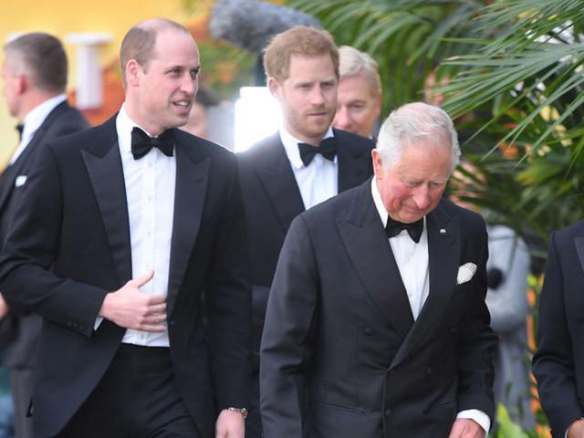 Carlo d'Inghilterra, che voleva William ed Harry al suo fianco, insieme