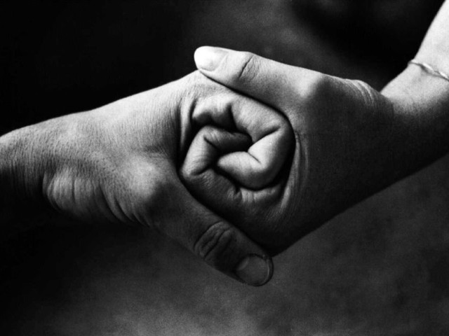 """Solidarietà ai docenti e al personale delle scuole di Monfalcone, colpiti dalle """"liste di proscrizione"""" della sindaca Cisint"""