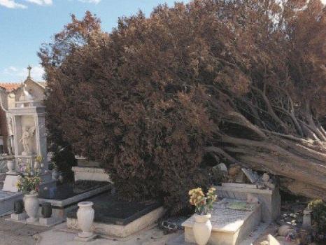 La provincia flagellata dal vento: a Castelvetrano danni alle tombe