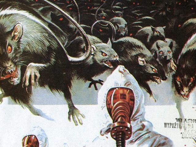 B-Movies diventati leggenda: 'Rats – Notte di terrore'