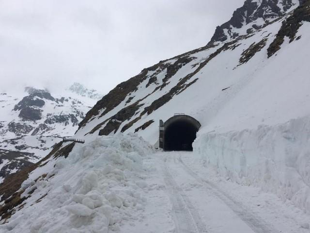 Giro, neve sul Gavia: scalata a rischio. FOTO