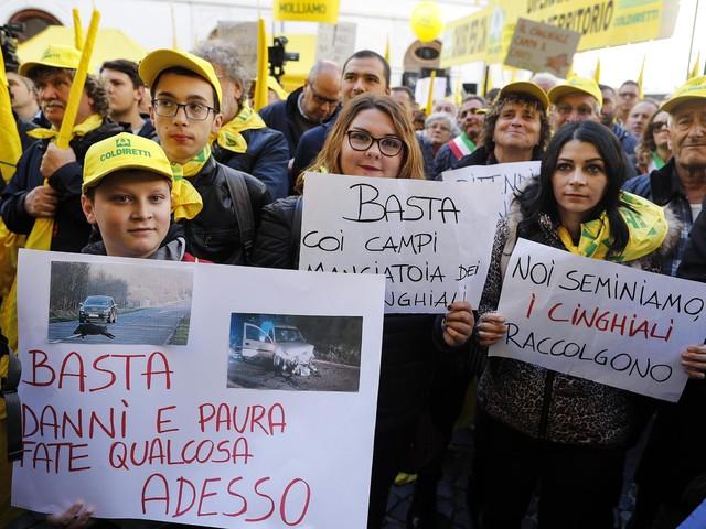 Agricoltori, arriva la tassazione Irpef Roma introduce il prelievo dal 2021: sarà di 23 euro ogni 1.000 di reddito