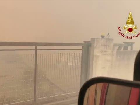 Incendi Sardegna, il salvataggio degli animali - Video