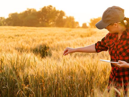 8 marzo: Donne in Campo Cia, agricoltura femminile favorire accesso alla terra