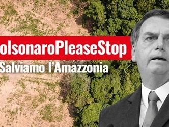 """Amazzonia, Di Maio a Bolsonaro """"Fermi la distruzione della foresta"""""""