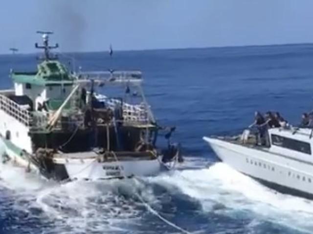"""""""Alt"""", poi la sparatoria in mare: alta tensione tra Gdf e tunisini"""