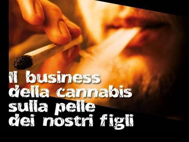Cannabis light, neuroscienziato mette in guardia politici e famiglie