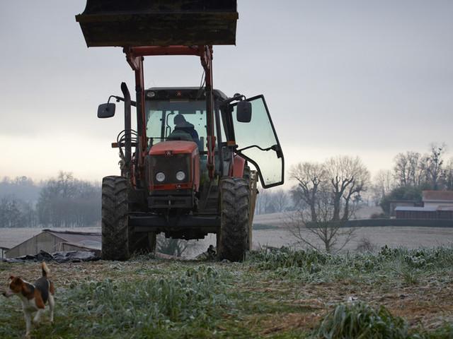 Un contadino belga ha spostato di due metri il confine con la Francia
