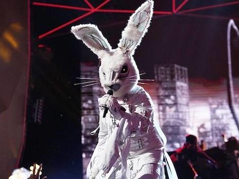 The Masked Singer chiude con ottimi numeri in Germania, ora tocca all'Italia