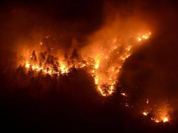 Como, con una grigliata scatenarono un incendio nel bosco: multa di 13 milioni di euro