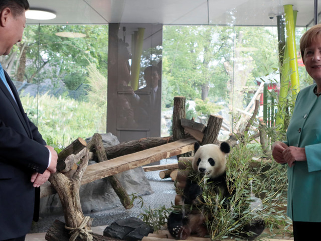 Panda-diplomazia di Berlino. Xi vede Merkel, la Cina sostiene la Germania al G20