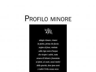Profilo minore