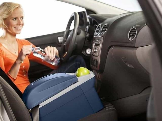 Frigorifero portatile per auto: il fresco per gli alimenti e bevande