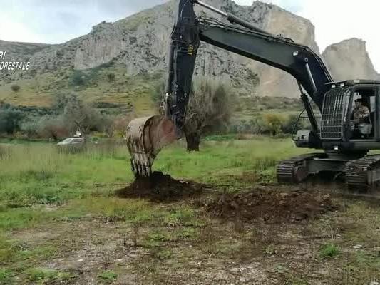 Le immagini dello scavo dei carabinieri