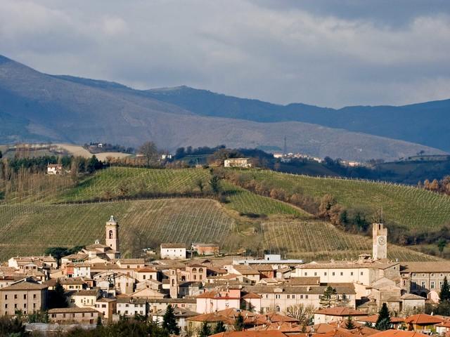 Marche: Matelica accoglie i turisti con l'arte e un calice di Verdicchio Doc