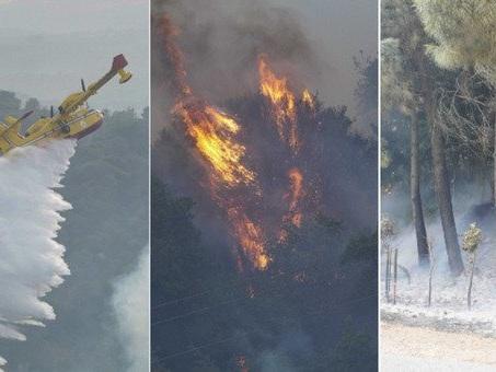 Incendi in Sardegna, la mappa dei focolai: ora si teme il cambio direzione dei venti