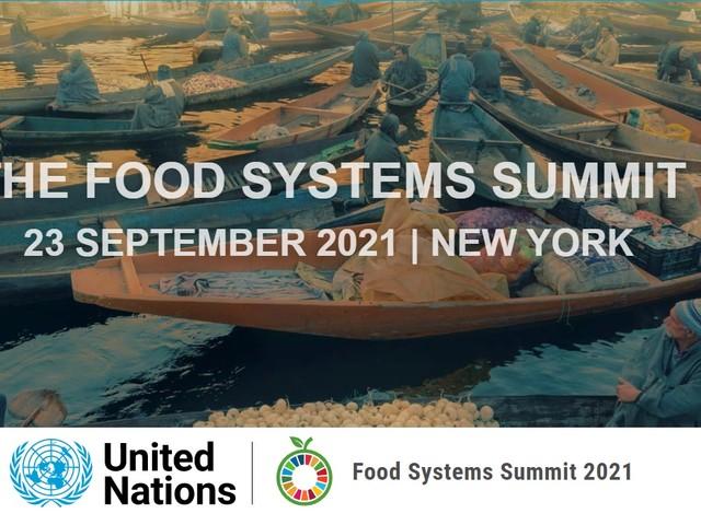 Food System Summit, Guterres: «Il cibo è un diritto umano, non solo un bene da scambiare»