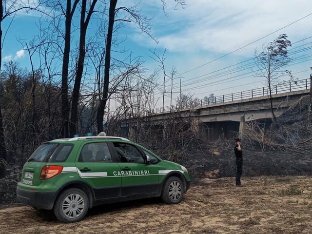 Dalla Liguria alla Sicilia, carabinieri in azione contro gli incendi