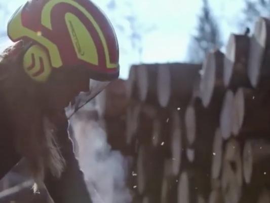 La battaglia di Vania, l'unica donna tra i boscaioli impegnati sulle foreste del Cansiglio