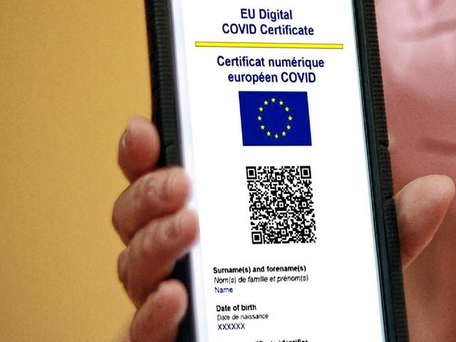 Covid: Del Conte, 'legge green pass in azienda costituzionale, dire no solo un pretesto'