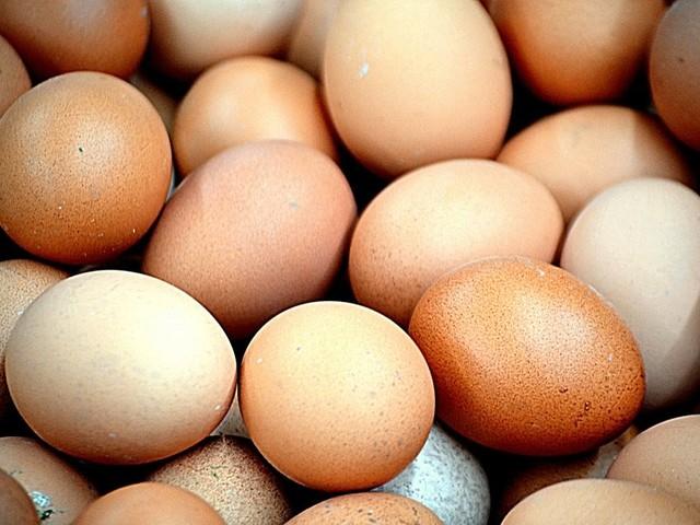"""Al via """"l'operazione tuorlo"""": sequestrate 26mila uova"""